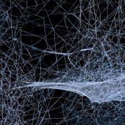 Netzwerk Innovation